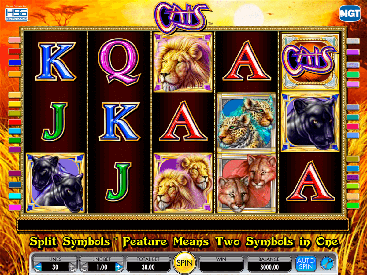 Free casino slots cats what are the causes and effects of gambling